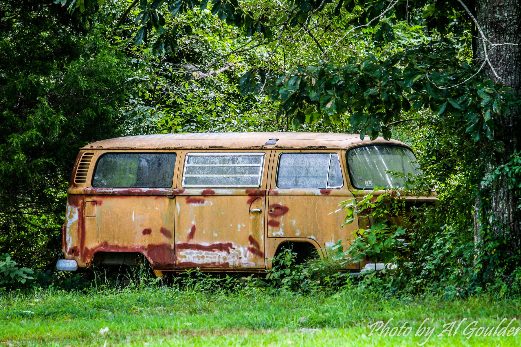 VW-Bus-
