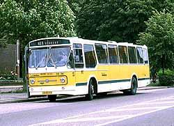 DomburgWABO39xbanner