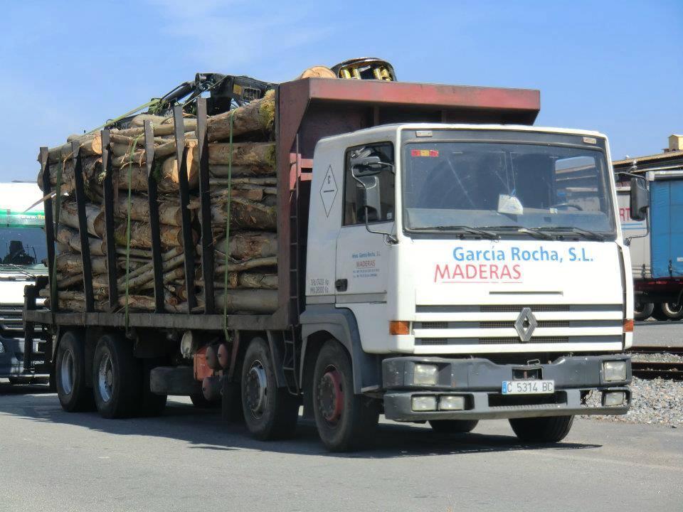 Madereros---Hout--trucks--33