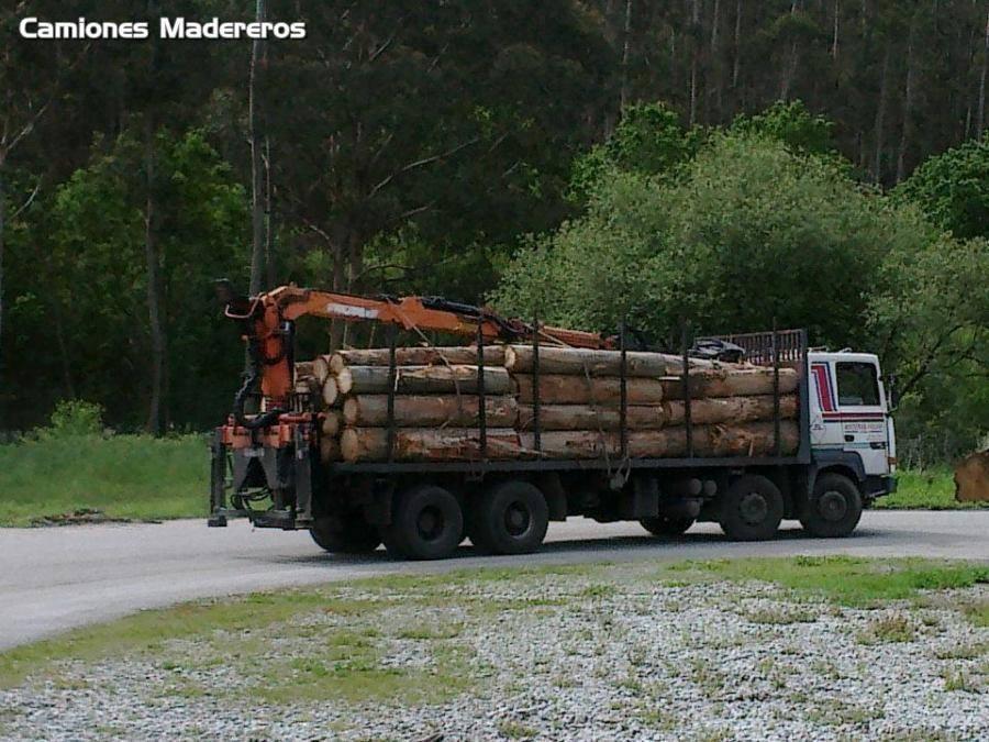 Madereros---Hout--trucks--34