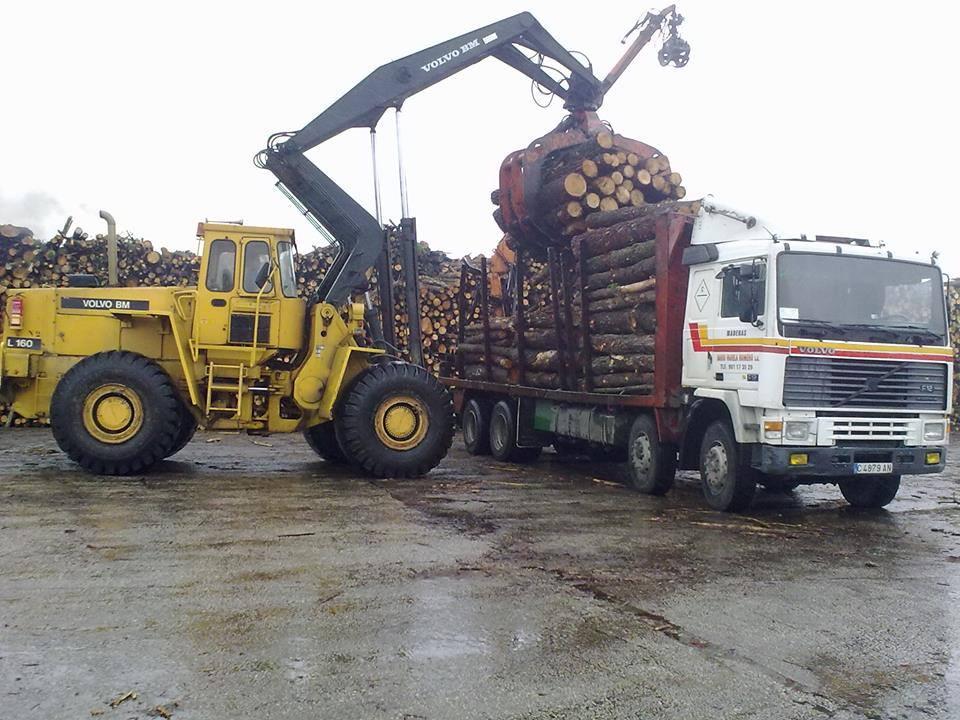 Madereros---Hout--trucks--36-