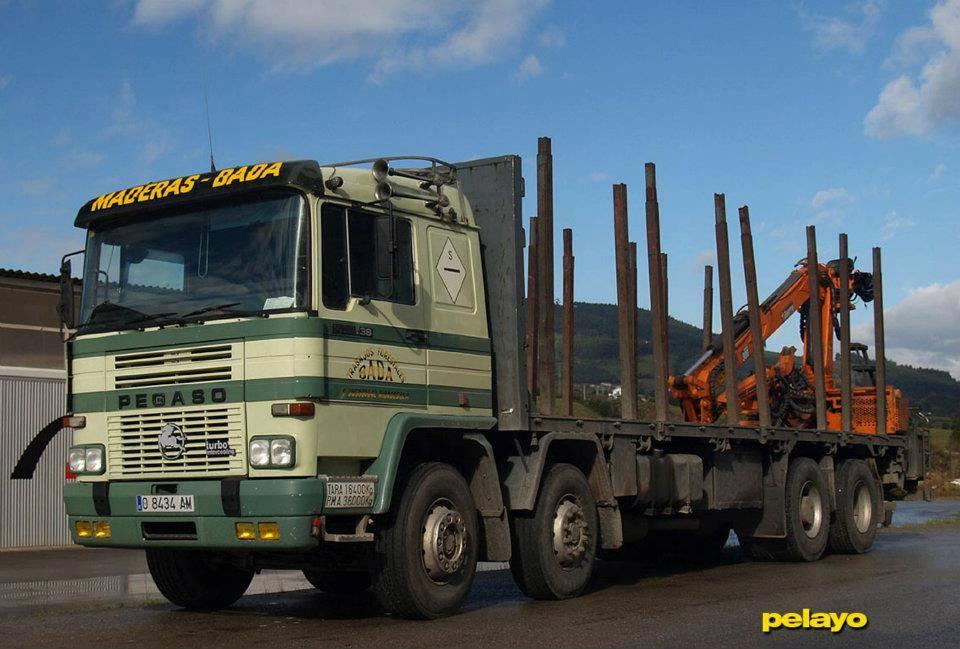 Madereros---Hout--trucks--39-