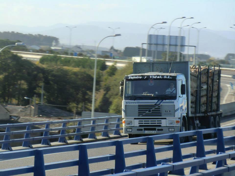 Madereros---Hout--trucks--40-