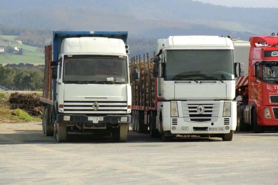 Madereros---Hout--trucks--41