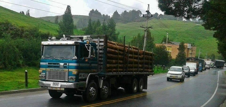 Madereros---Hout--trucks--42-