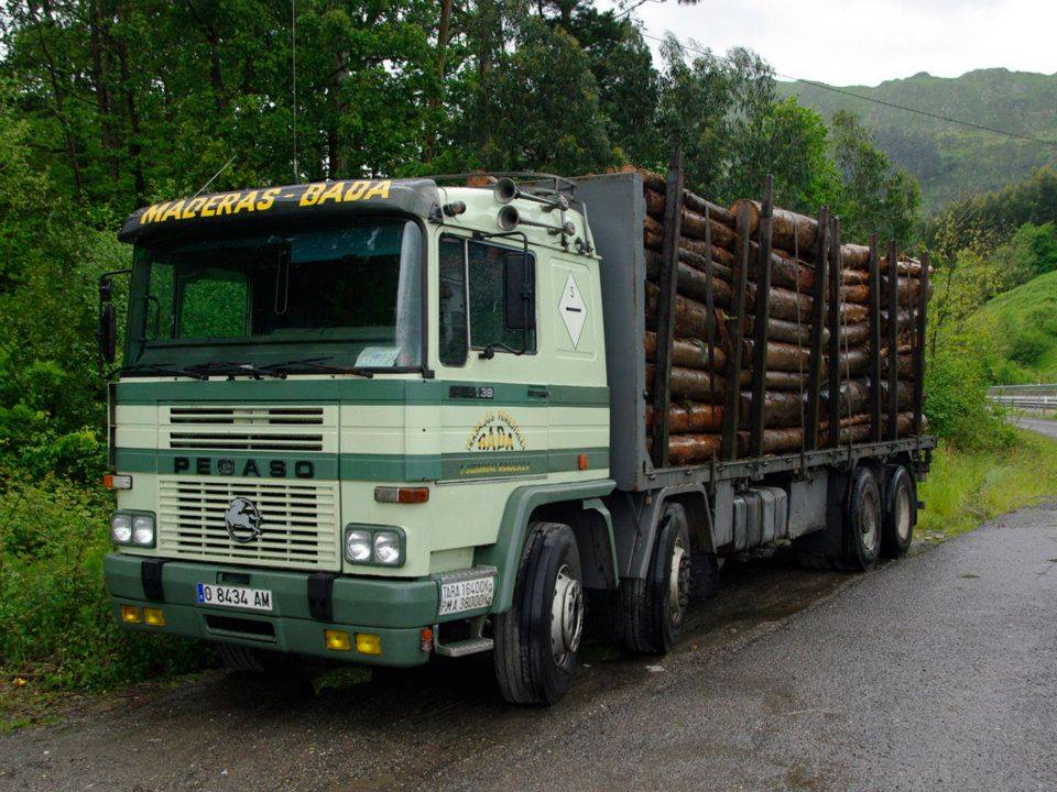 Madereros---Hout--trucks--44