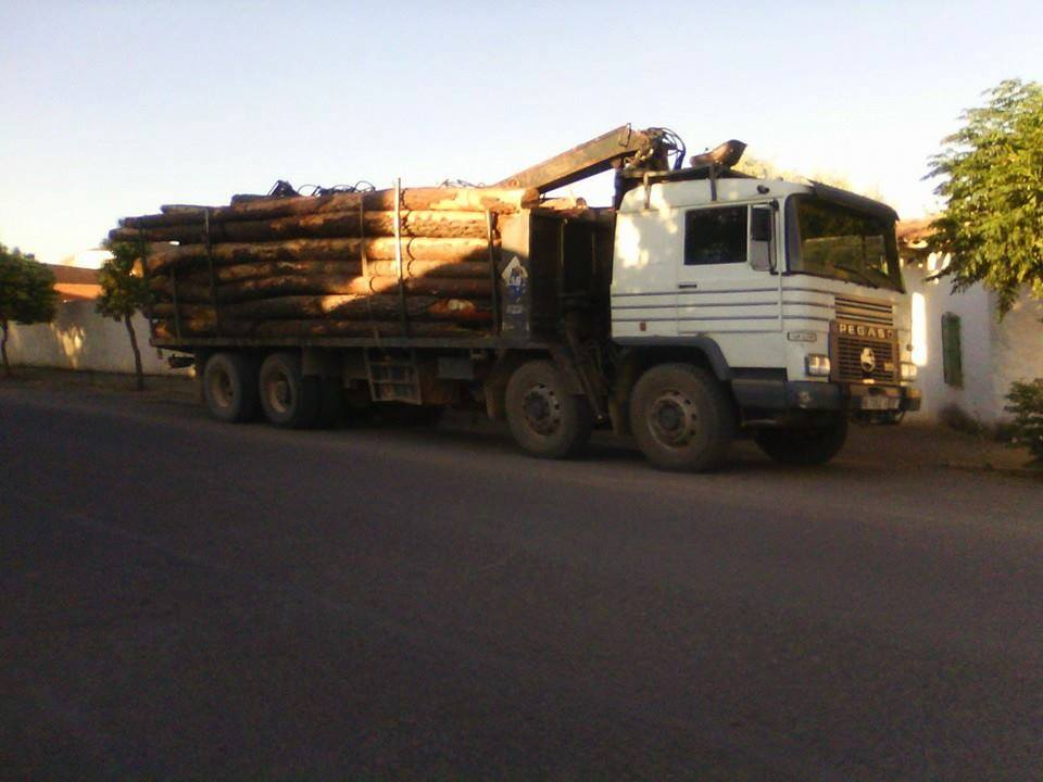 Madereros---Hout--trucks--46
