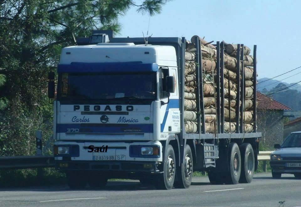 Madereros---Hout--trucks--47
