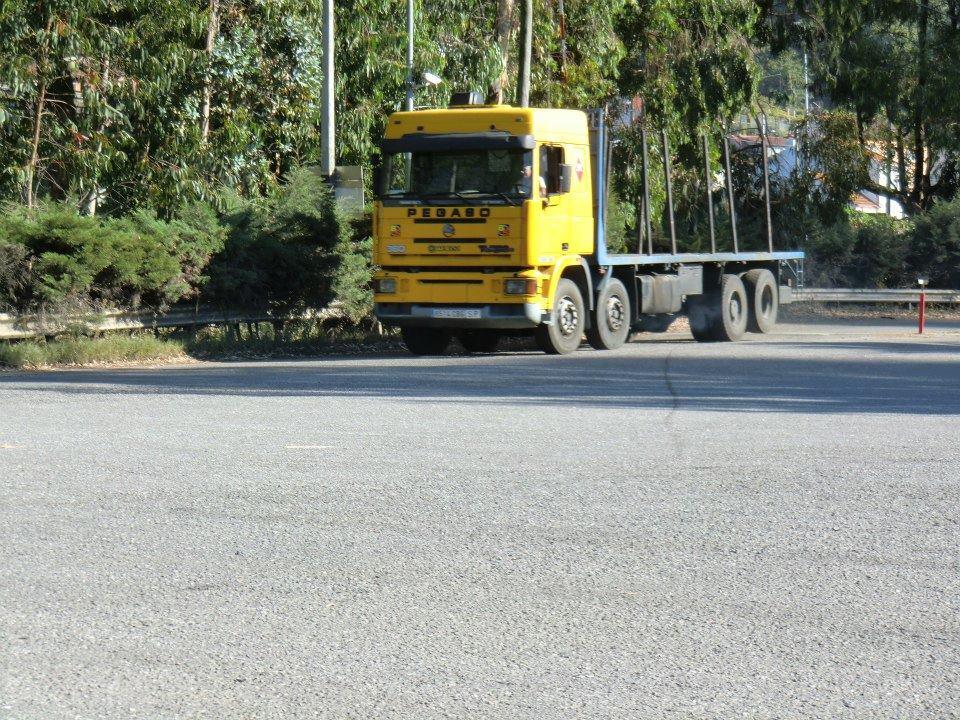 Madereros---Hout--trucks--49