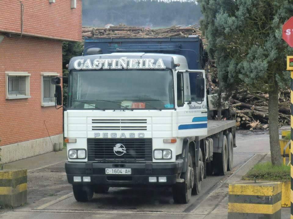 Madereros---Hout--trucks--51