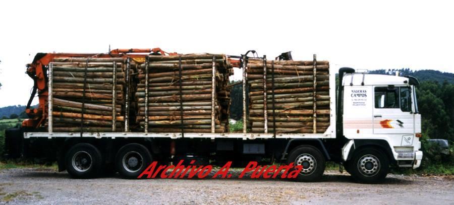Madereros---Hout--trucks--52