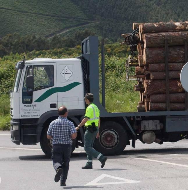 Madereros---Hout--trucks--54