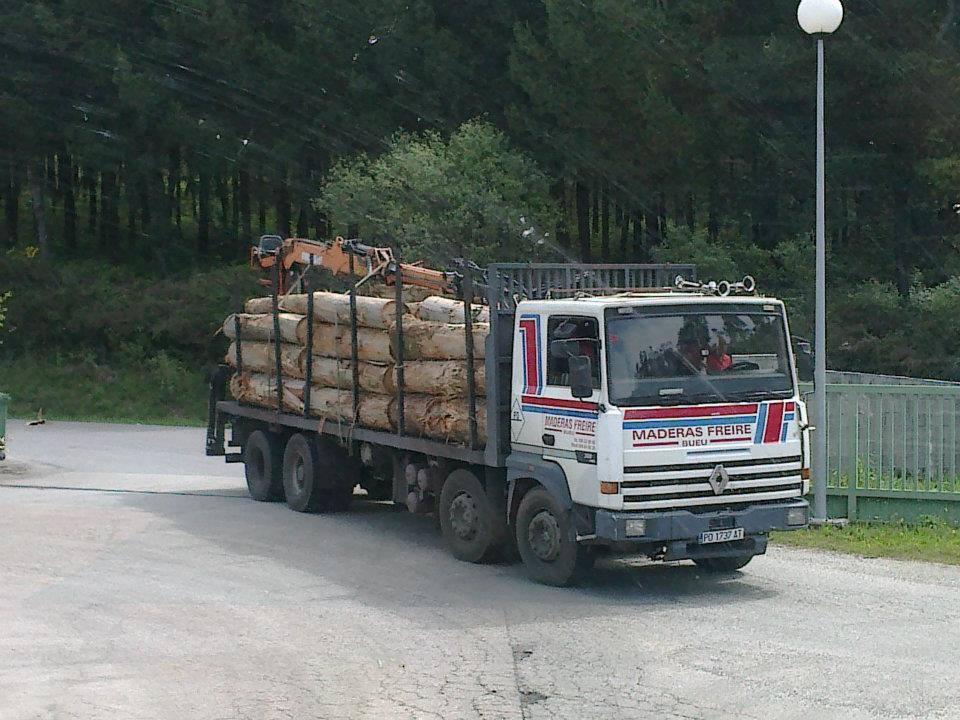 Madereros---Hout--trucks--55