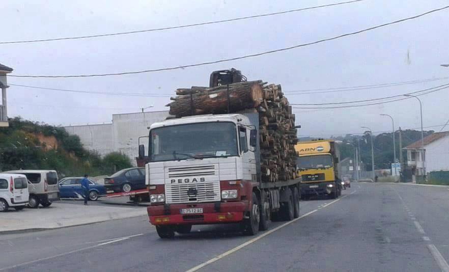 Madereros---Hout--trucks--56