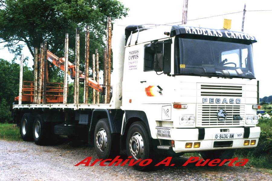 Madereros---Hout--trucks--61