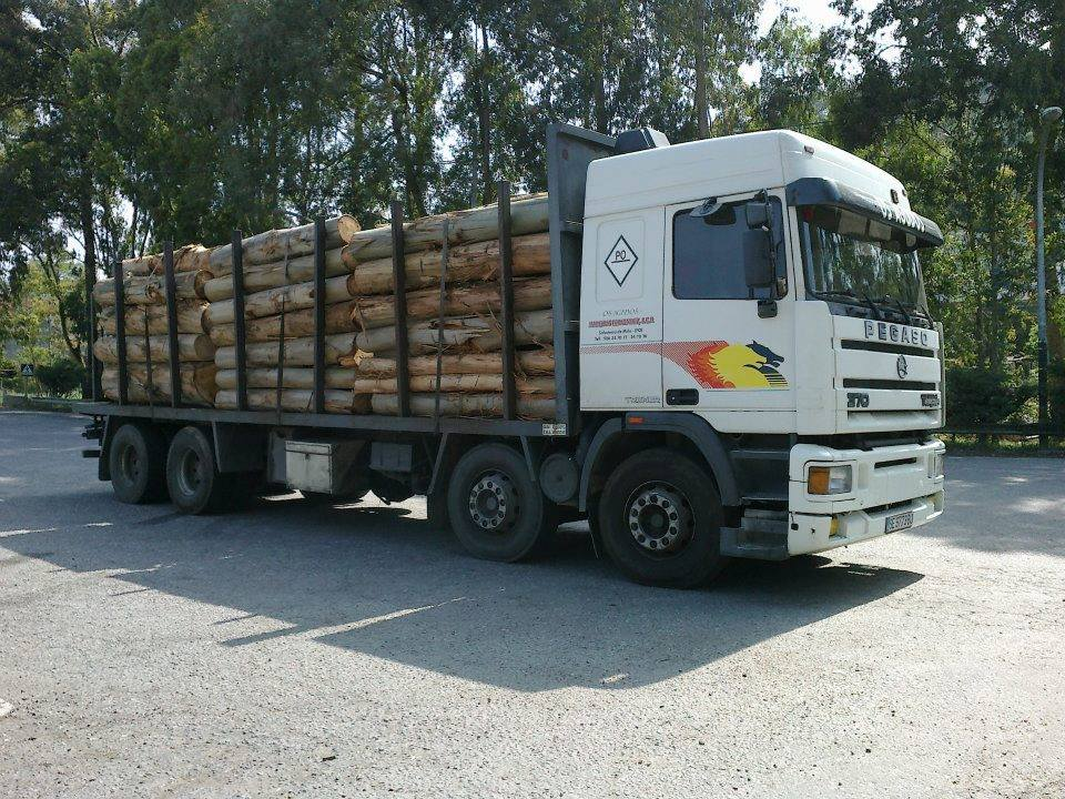 Madereros---Hout--trucks--64