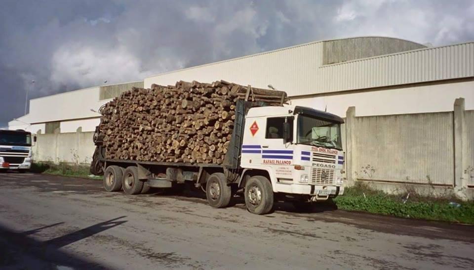 Madereros---Hout--trucks--65