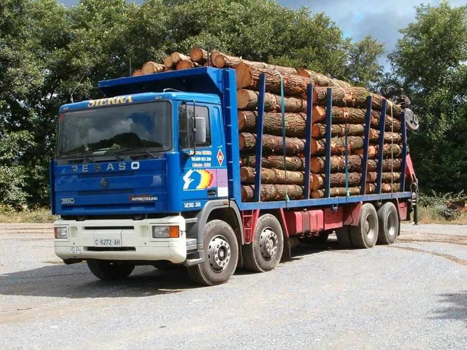 Madereros---Hout--trucks--66