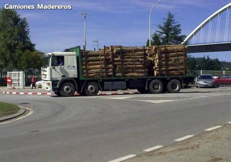 Madereros---Hout--trucks--71