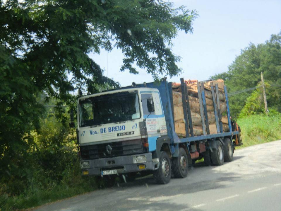 Madereros---Hout--trucks--74
