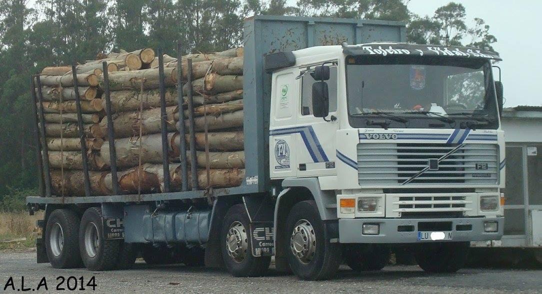 Madereros---Hout--trucks--77