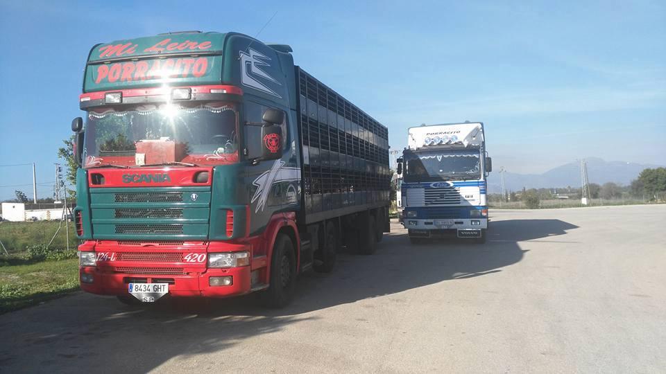 Ganaderos-Varkens-Camions--10
