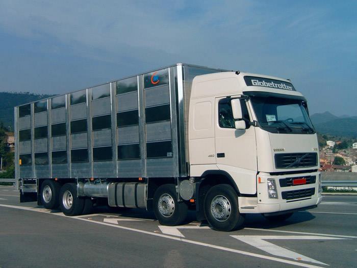 Ganaderos-Varkens-Camions--20