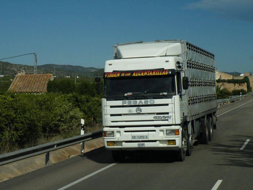 Ganaderos-Varkens-Camions--22