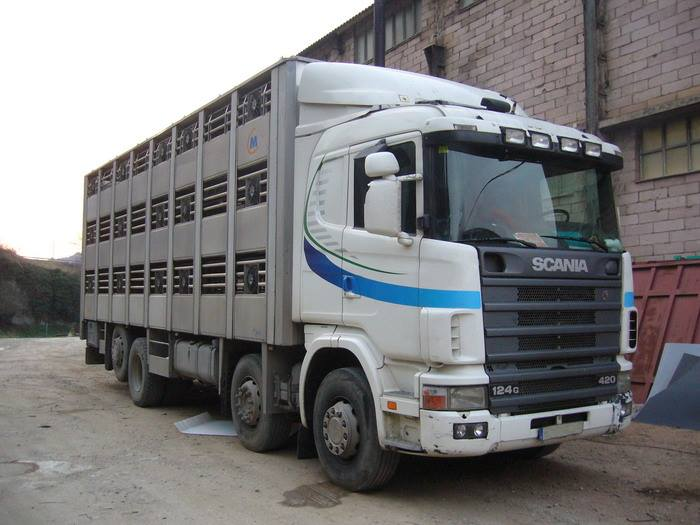 Ganaderos-Varkens-Camions--4