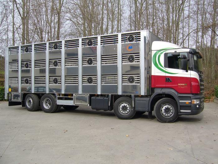 Ganaderos-Varkens-Camions--5