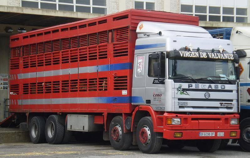 Ganaderos-Varkens-Camions--38