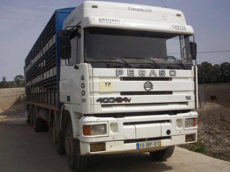 Ganaderos-Varkens-Camions--48