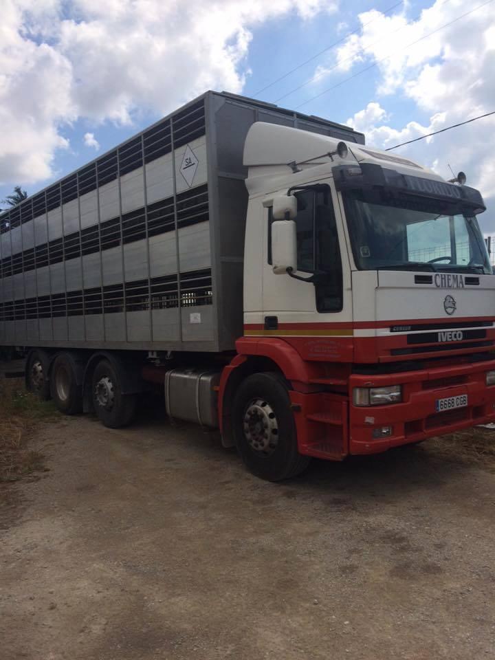 Ganaderos-Varkens-Camions--55