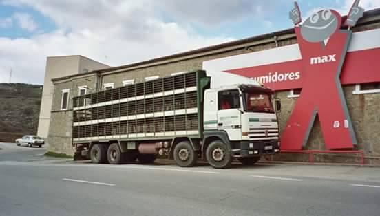 Ganaderos-Varkens-Camions--57