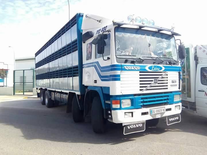 Ganaderos-Varkens-Camions--59
