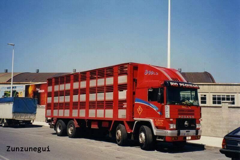Ganaderos-Varkens-Camions--62