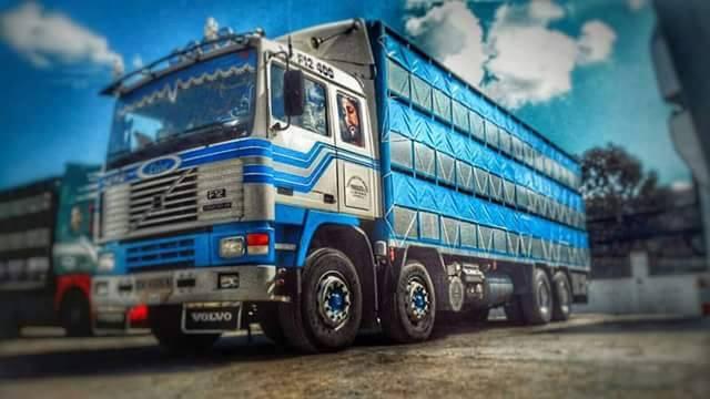 Ganaderos-Varkens-Camions--65