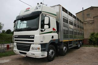ganaderos-varkens-camions--51