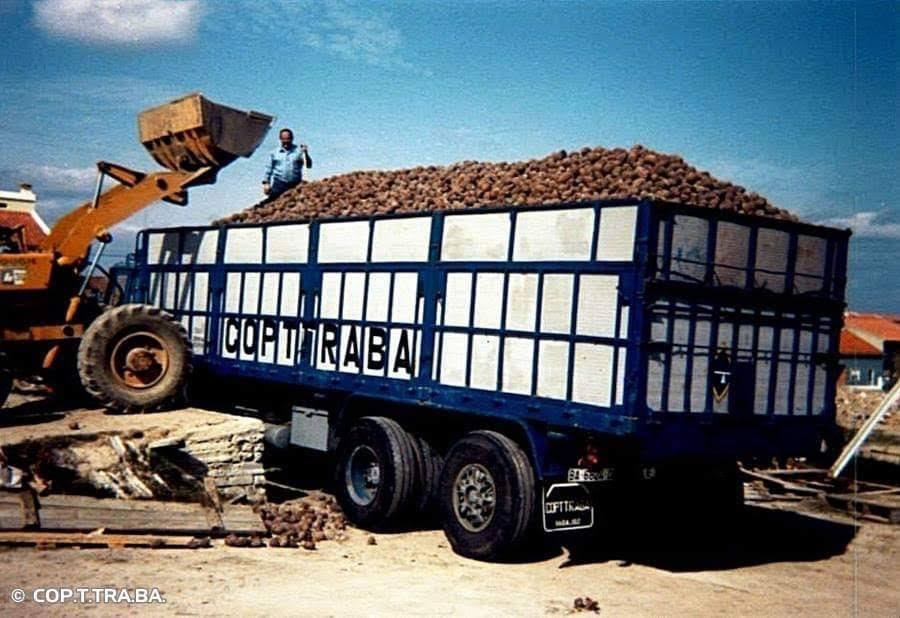 History-trucks--39