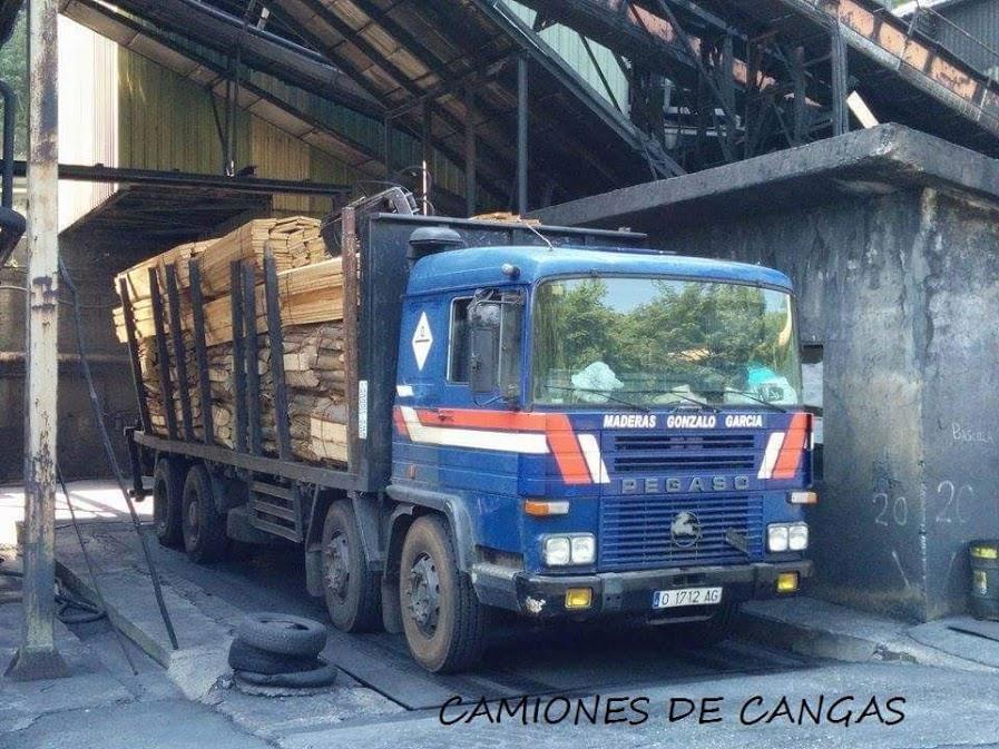 Madereros---Hout--trucks--3