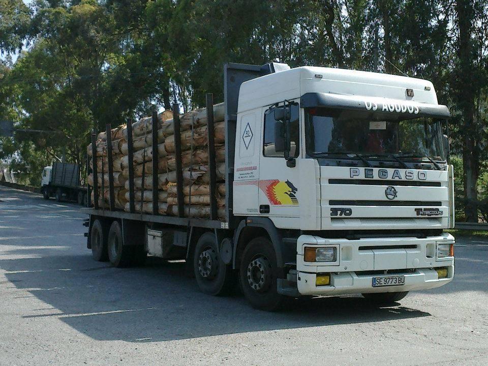 Madereros---Hout--trucks--5