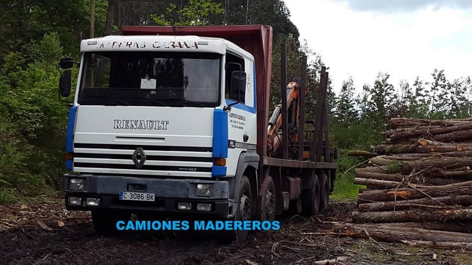 Madereros---Hout--trucks--6