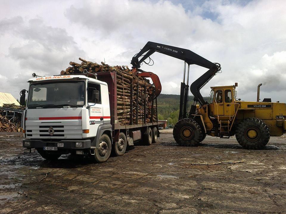 Madereros---Hout--trucks--8