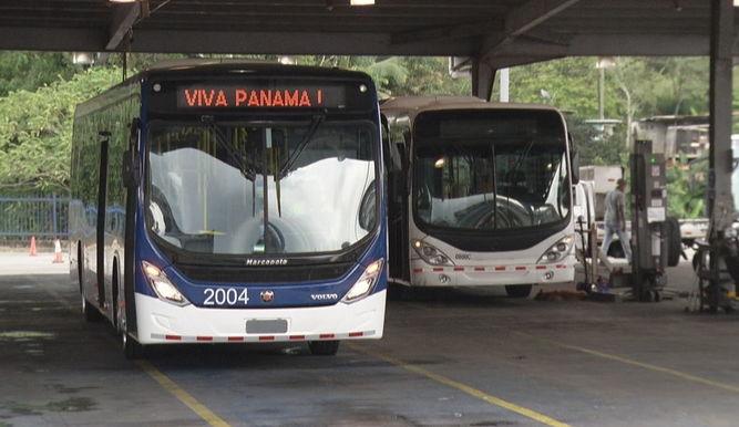 Metrobus_11443940