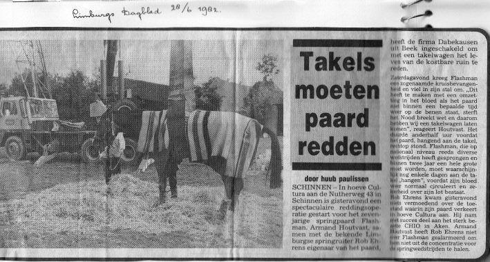 media-1982