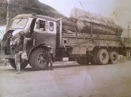 Met-een-oude-foto-van-een-d-9-500-brasinca-jaar-1956-of-1957-geladen-met-tora