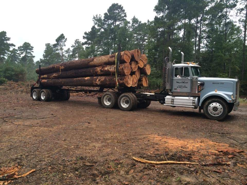 Western-Star-in-2019--Type-1996-logger--1
