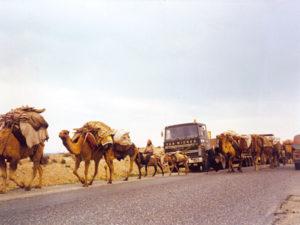 023-Midden-Oosten--1976-1985-