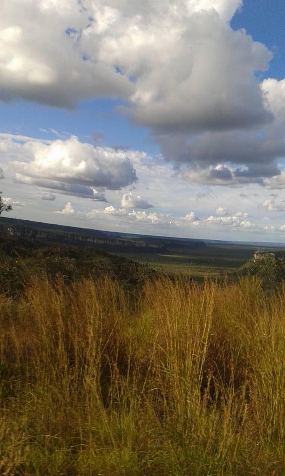 9-6-2015-Garanta-Tocantins