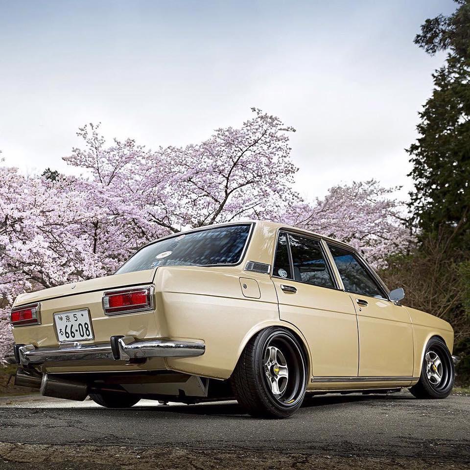 Datsun-510-Bluebird--1967-2